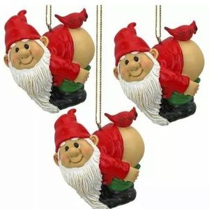 Other - Loonie Moonie Gnome Holiday Ornament